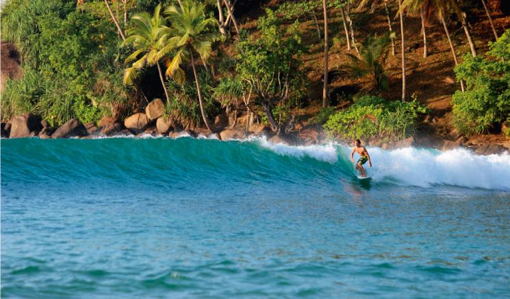 Periodista que aprendía a surfear en Sri Lanka muere tras ataque de cocodrilo
