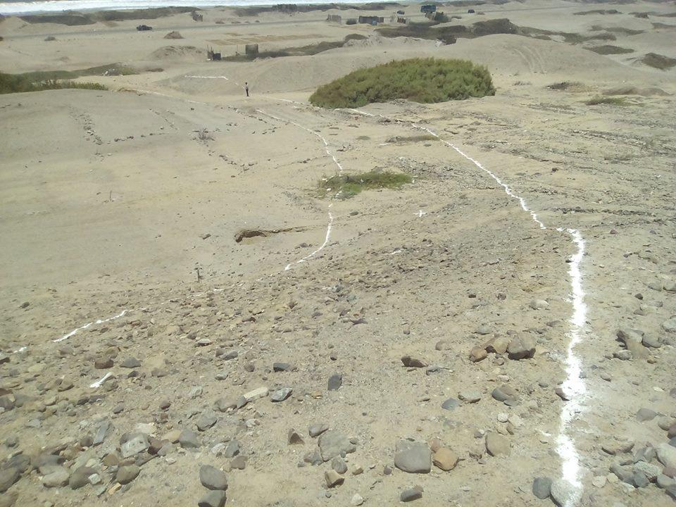 Denuncian invasión de totorales de Huanchaco