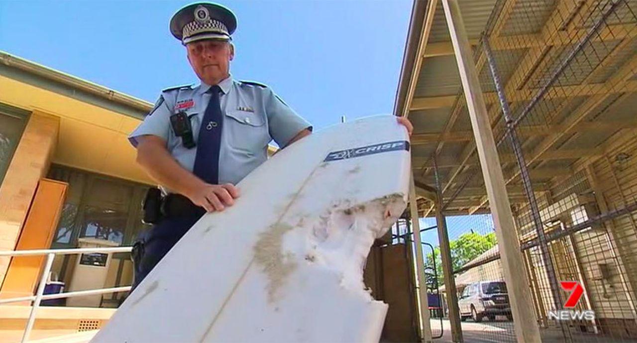 Australia: Byron Bay en alerta tras reciente ataque de tiburón