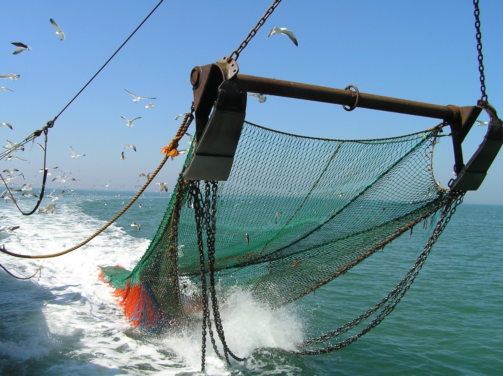 Redes de pescar en desuso serán usados para hacer juguetes y ropa