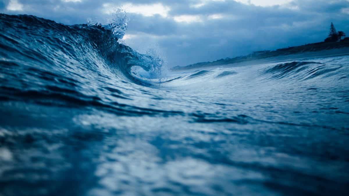 ¿Por qué el 8 de junio es el Día Mundial de los Océanos?