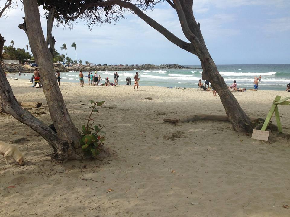ALAS patrocina evento de surf a beneficio de la juventud venezolana