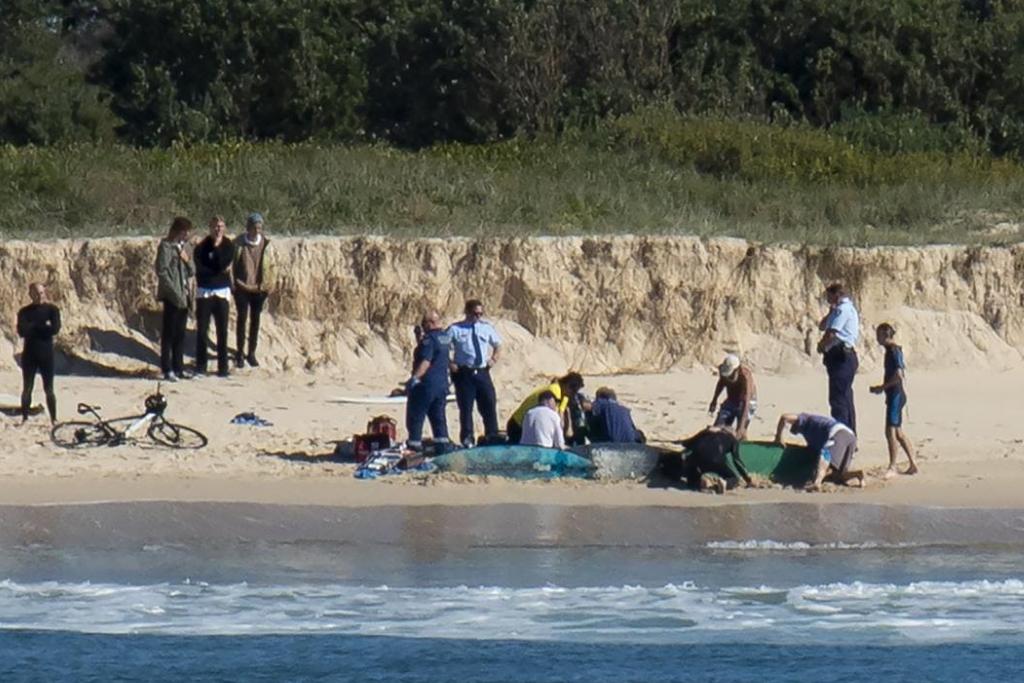 Muere surfista en Australia por ataque de tiburón