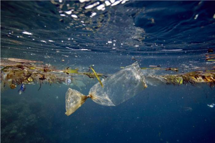 El plástico está matando la vida marina en el Perú