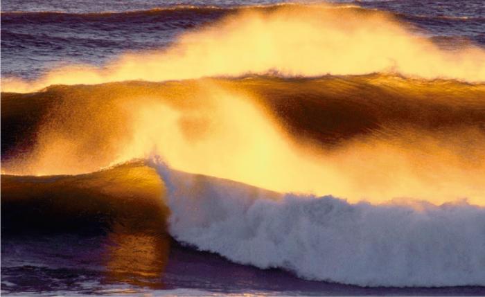 Sabias qué cada año los océanos se vuelven más ácidos