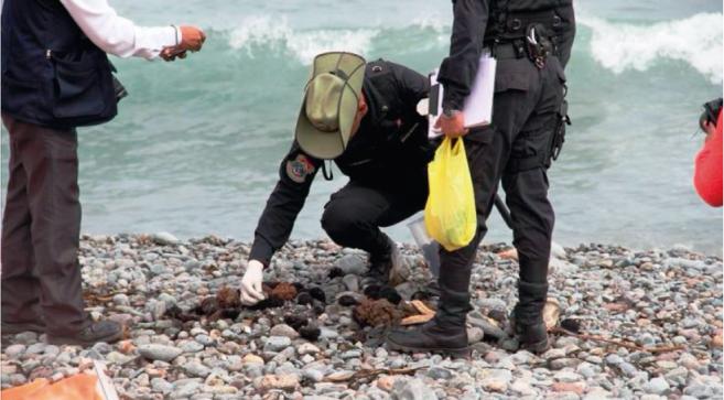Graves daños ambientales por derrame de petróleo en la costa sur del Perú