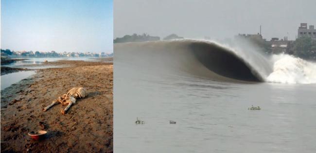 Surfeando entre muertos