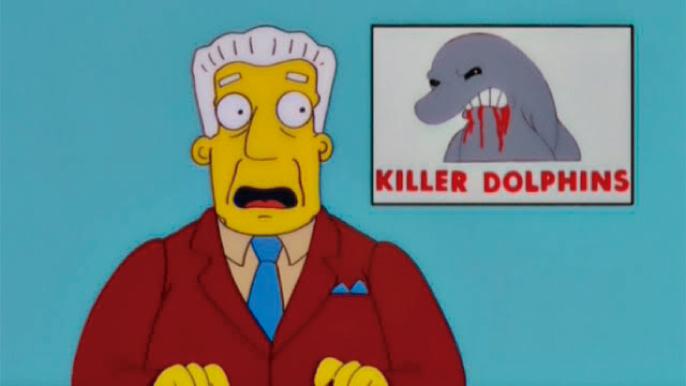 Delfín agresivo deja a tablista con 18 puntos en la cabeza
