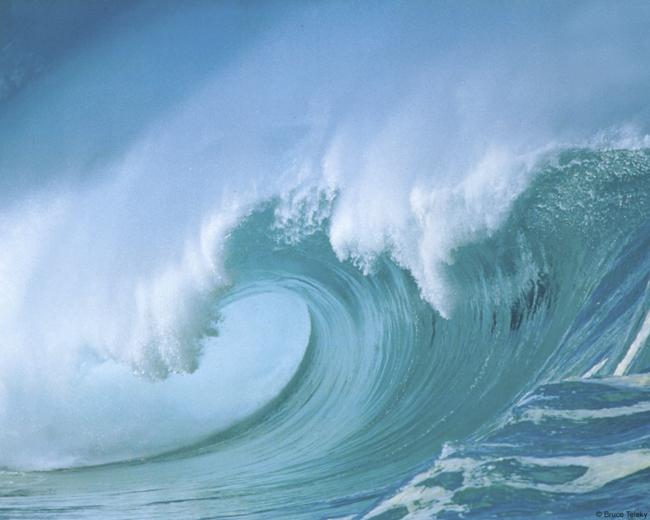 Sabías que los océanos producen la mitad de oxígeno que respiramos